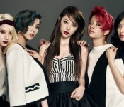 For Your Viewing Pleasure: The 2014 f(x) Collection