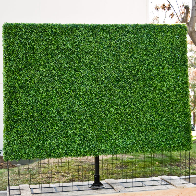 plant screens for outdoor
