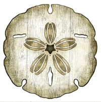Sand Dollar Wood Cut Art for Sale - Cottage & Bungalow