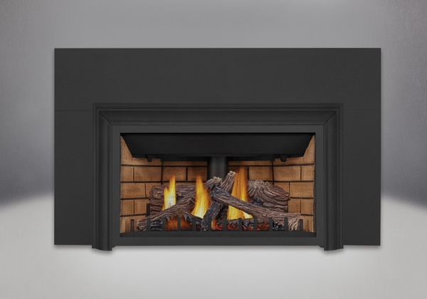 Napoleon GDIZC Direct Vent Gas Fireplace Insert - GDIZC-NSB