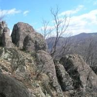 ЈЕШЕВАЦ-Црни врх, Треска