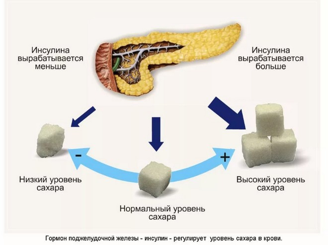 пониженный уровень сахара холестерина в крови