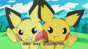Cute Shuckle Wallpaper Serebii Net Shiny Pok 233 Mon In The Anime