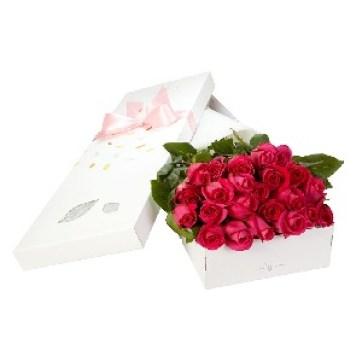 trandafiri-roz-la-cutie-YXVDP