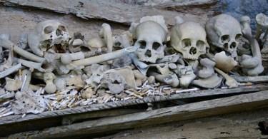 A los huesos se les hacen ofrendas