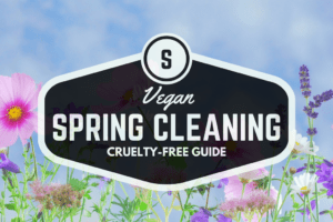 Spring Cleaning with the Best Vegan Cleaning Supplies + Giveaway!