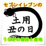 セブンイレブンのうなぎ(土用丑の日2016)の値段高っ!産地はまさか?2