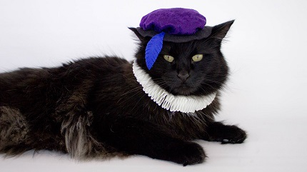 Video tutorial: Renaissance costume for a cat or small dog