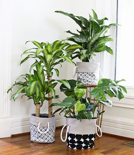 Tutorial: Fabric planter buckets