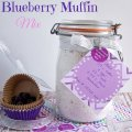 Homemade Blueberry Muffin Mix with labels:sewlicioushomedecor.com