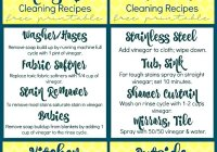 Cleaning Recipes with Vinegar For Your Home at sewlicioushomedecor