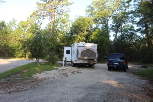 The camp sites are huge at Silver Springs State Park.