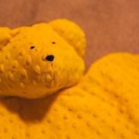 A Golden Bear