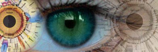 iris si ochi harta iridologie