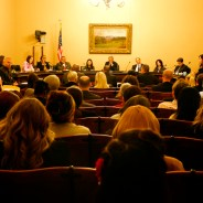 Calif. Assembly Public Safety Committee hearing on SHUs 022513 by Sheila Pinkel, web