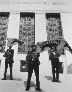Black Panthers- Alameda County Courthouse 3 Panthers with 'Free Huey' flags by Pirkle Jones