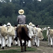 "Prisoners are ""driven"" to the fields by a guard on horseback in a scene reminiscent of plantation slavery on a Texas plantation-turned-prison known as the Ellis Unit, the photo taken in 1978. – Photo courtesy of the Marshall Project"