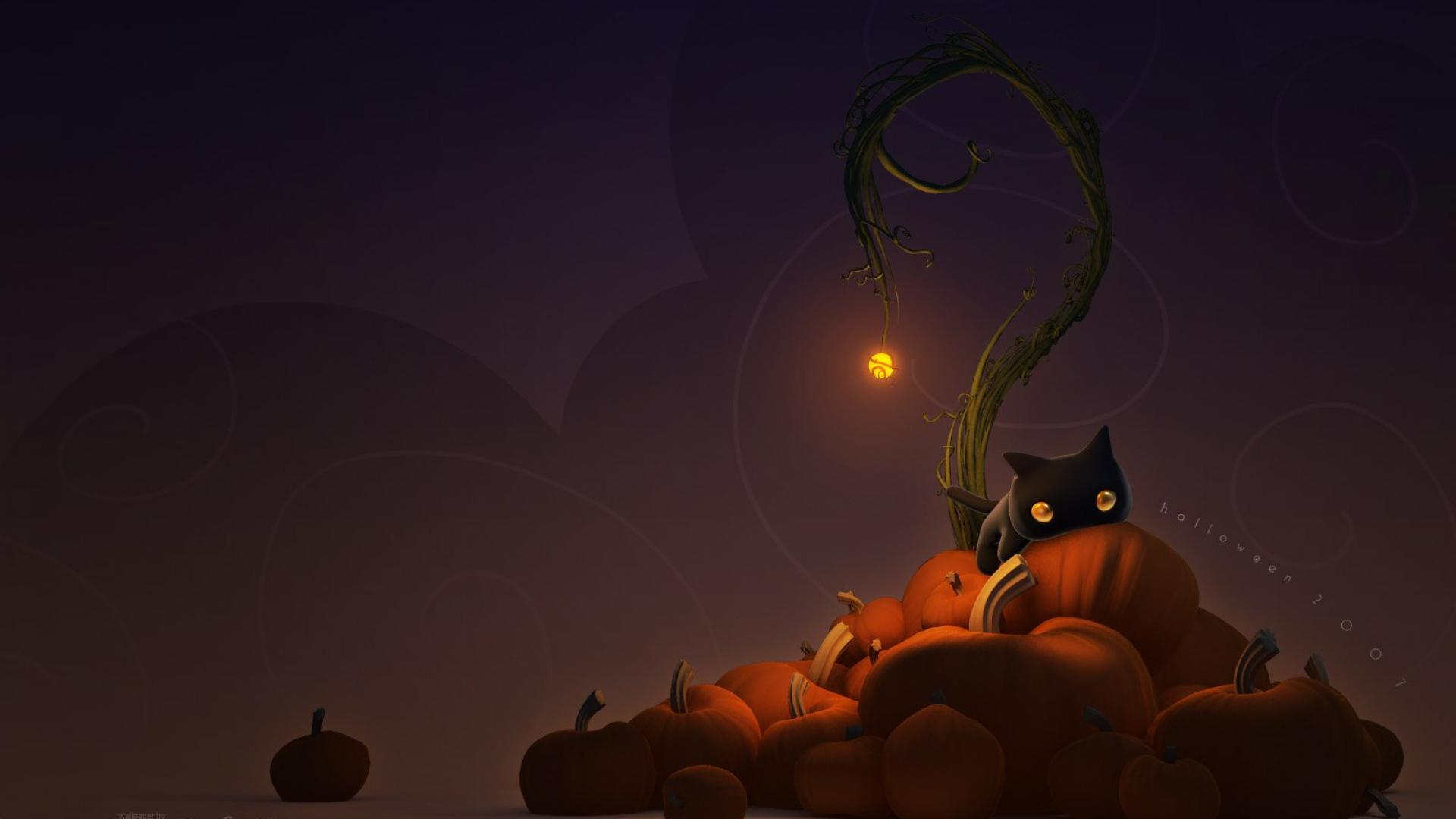 Cute Halloween Wallpapers For Android Halloween Cat Wallpaper Sf Wallpaper