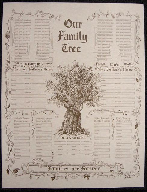 Family Tree Chart, Large Parchment \u2013 Stevenson Genealogy  Copy