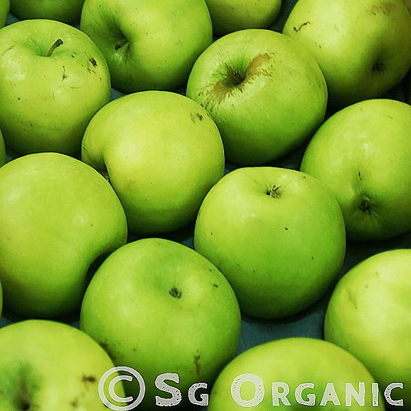 Green delicious apple