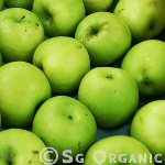 Organic green apple