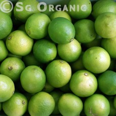 Certified Organic Green limes from Australia