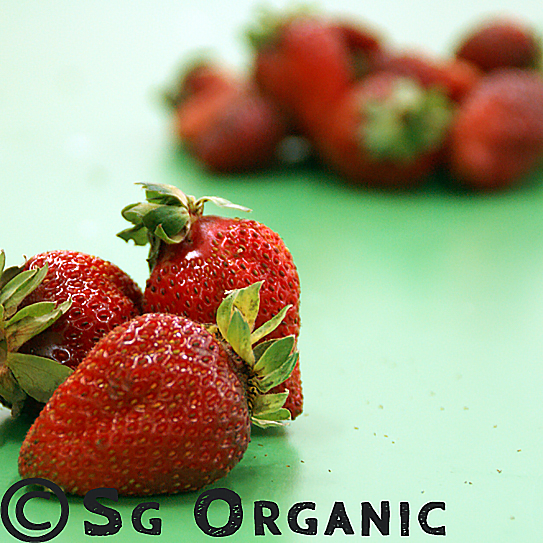 SG Organic strawberries