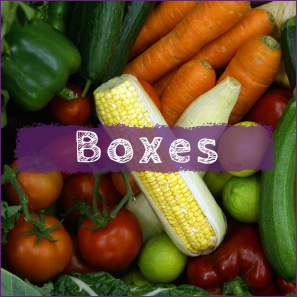 Category - Organic Fruit and Vegetable seasonal boxes