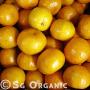 citrus organic mandarins