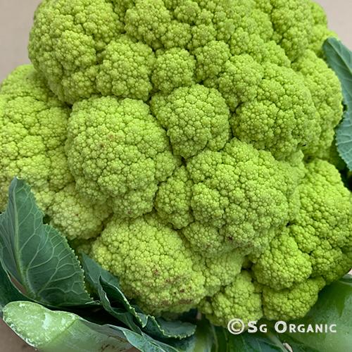 Green-cauliflower