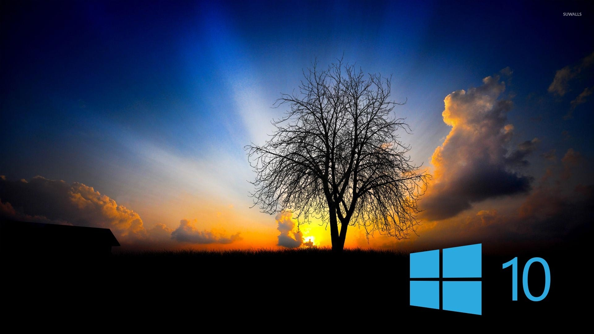 Free Fall Hp Widescreen Wallpapers 400 Stunning Windows 10 Wallpapers Hd Image Collection 2017