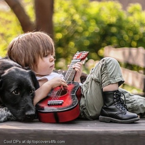 Dog Quote Wallpaper 125 Cool Stylish Profile Pictures For Facebook For Boys