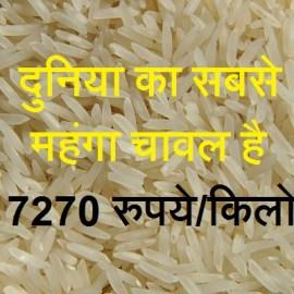 चावल से जुड़े कुछ इंटरेस्टिंग फैक्ट्स जानिए