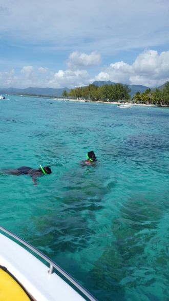 Finding Dory Mauritius edition