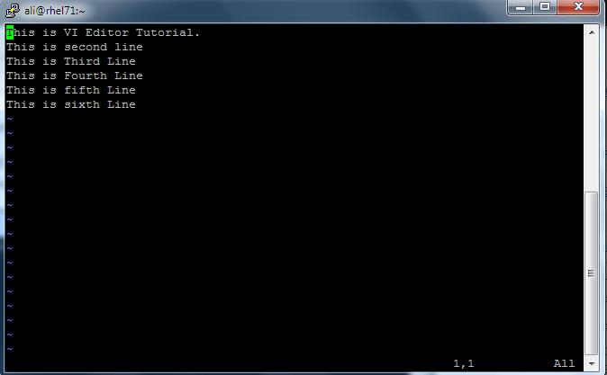 VI_Editor_11