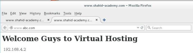 virtual host 2