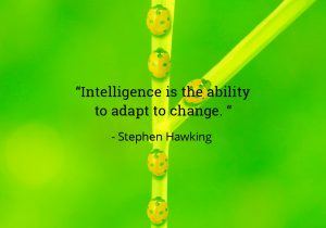 Intelligence is the ability to adapt to change - Stephen Hawkins