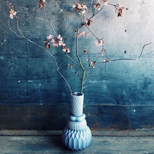 dark background with elegant spring branch in vase on Shalavee.com