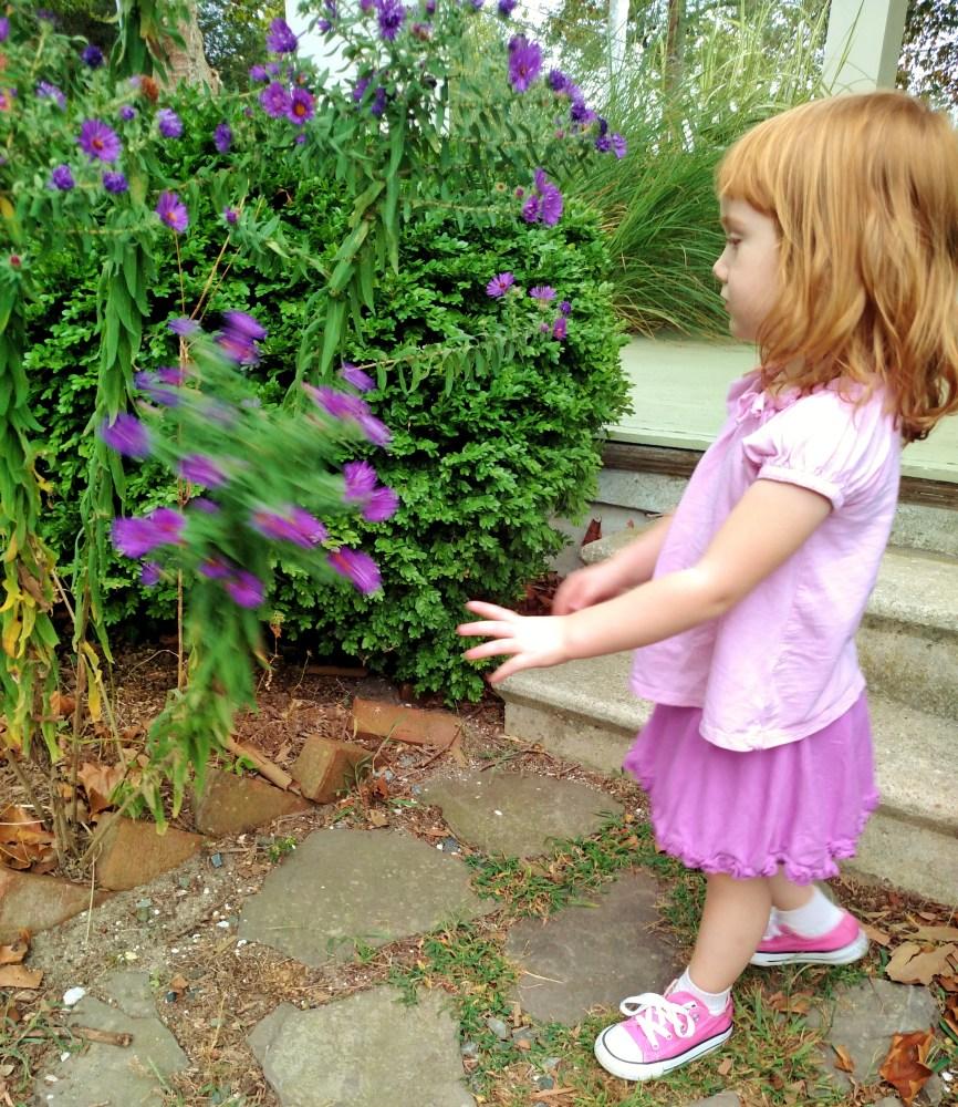 Fiona and the purple asters on Shalavee.com