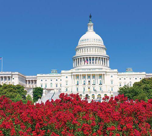 Legislation Under Pressure