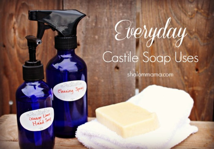 Everyday Castile Soap Uses