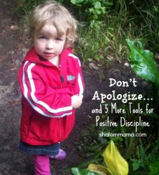 Don't Apologize… and 5 More Tools for Positive Discipline