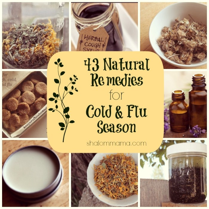 43 Natural Remedies for Cold & Flu Season