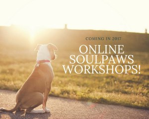 soulpaws-online-workshops