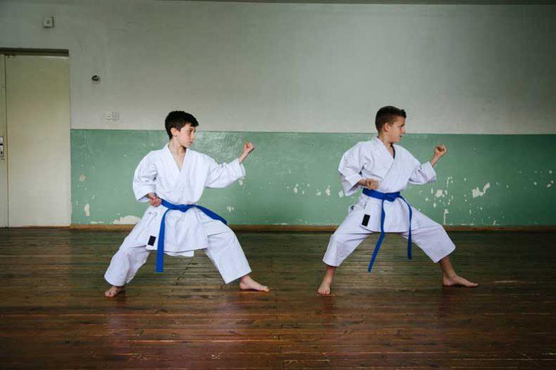 Judo or Taekwondo? Which Martial Art Benefits Your Health