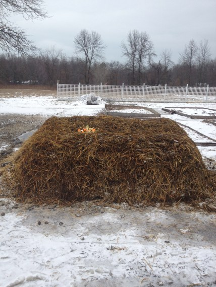 Artistically rendered manure pile.