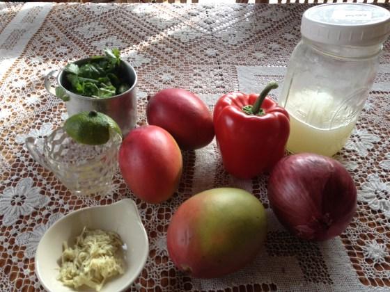 Getting ingredients ready for Mango Chutney