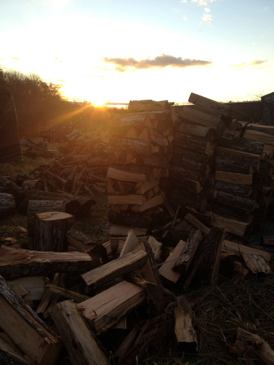 This is our woodpile--also a good place to get away from the world, decompress and pray.