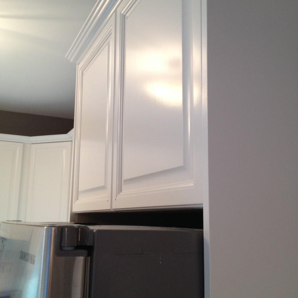 Kitchen Cabinet Spray Paint Sprayed Painted Cabinet Doors Professional Kitchen