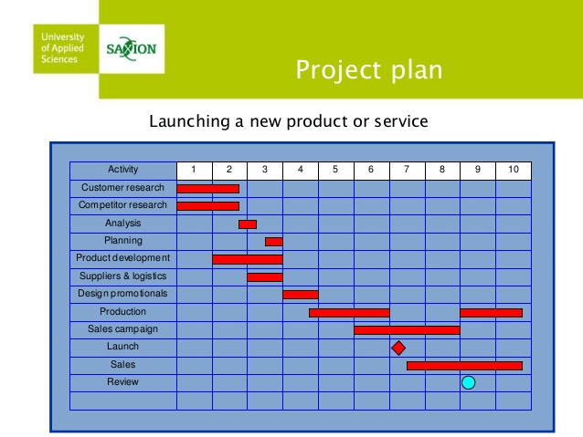 Product Launch Plan Template shatterlioninfo - product plan template